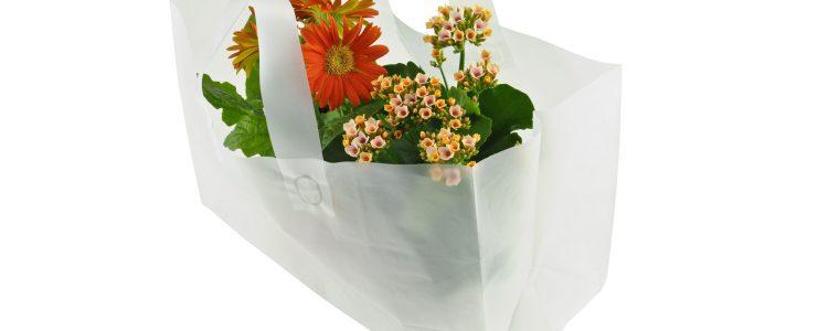 Plantbärkassar i olika storlekar